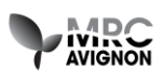 logo-mrc-avignon