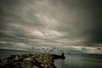 mer et jetée CF Ouellet